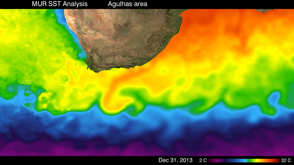 Eddies highlight ocean currents in the Agulhas area